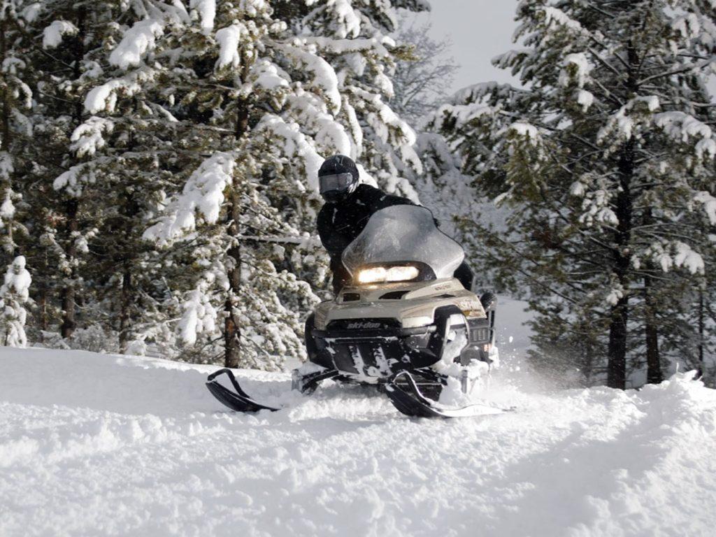 Snowmobiler driving through the woods